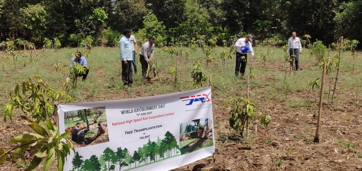 Additional tree plantation being undertaken in Surat district